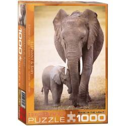 Puzzle 1000 pièces...