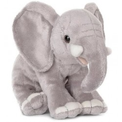 Eléphant d'asie WWF